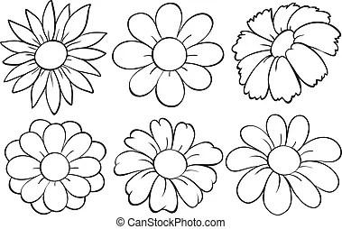 Bougainvillea flowers as frame design illustration.