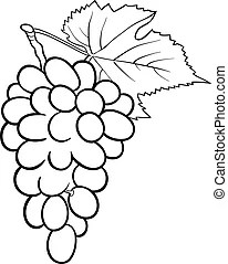Grapevine Clipart and Stock Illustrations. 4,185 Grapevine