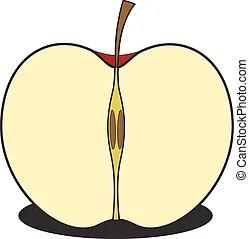 apple. sliced red apple