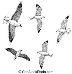Harbor Clip Art and Stock Illustrations. 6,063 Harbor EPS