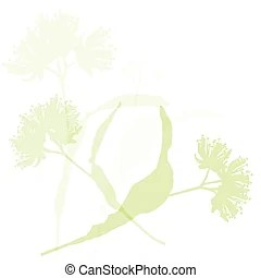 linden clip art vector graphics