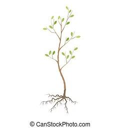 Seedling Clipart Vector and Illustration. 5,536 Seedling