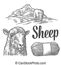 Yarn Illustrations and Stock Art. 5,334 Yarn illustration