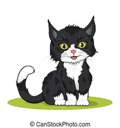 cute kitten very isolated colored illustration background