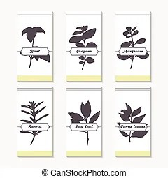 Tags collection with hand drawn spicy herbs dill bay leaf