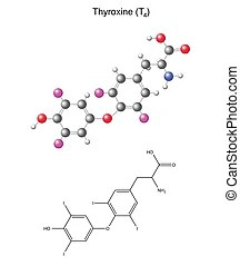 Thyroxine hormone molecule, chemical structure. Chemical