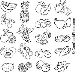 fruits clipart mango vector illustration fruit clip illustrations collection eps tree drawing drawings gograph canstockphoto