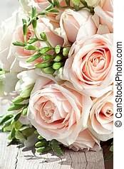 Freesien Bilder und Stockfotos 3795 Freesien Fotografie