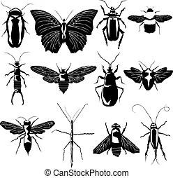 Insekt Vektor Clipart EPS Bilder. 84.746 Insekt Clip Art