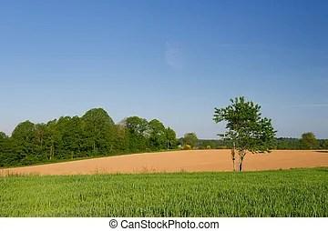 Belgio estate agricoltura paesaggio