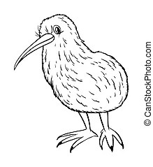 Kiwi vogel Stock Illustraties. Zoek onder 666 Kiwi vogel