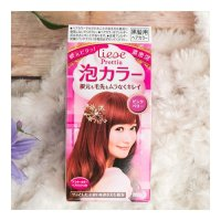 KAO LIESE PRETTIA Bubble Hair Dye Pink Berry 1set ...
