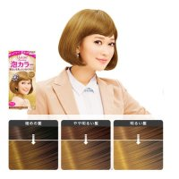 KAO LIESE PRETTIA Bubble Hair Dye #Milk Tea Brown 1Set ...