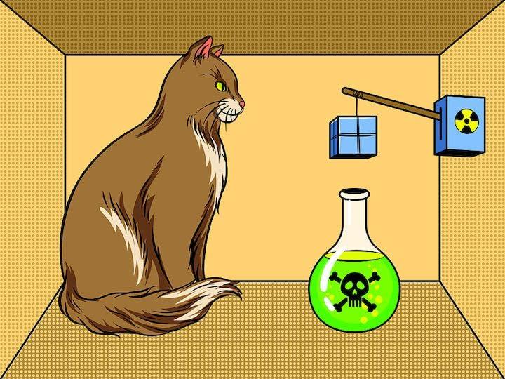 physicists save schrödinger s