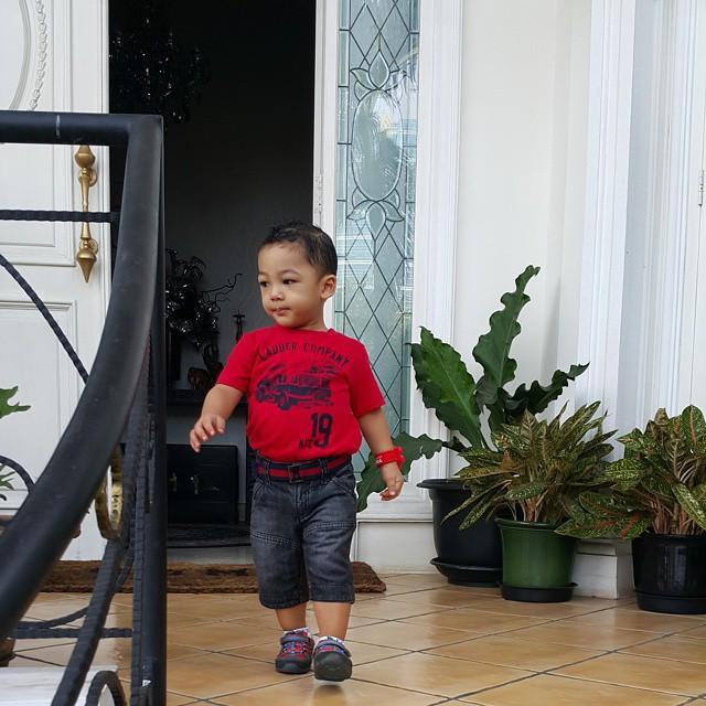 Rumah Krisdayanti dan Raul Lemos