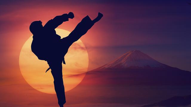 ilustrasi karate