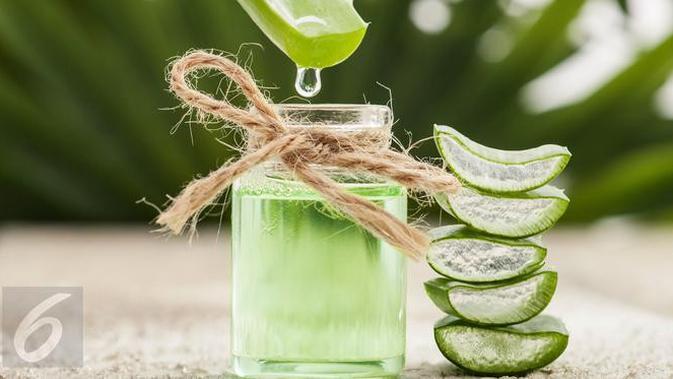 Anda bisa mengolah aloe vera atau lidah buaya menjadi air detoksifikasi. (Foto: iStockphoto)
