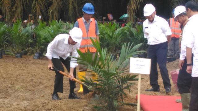 Presiden RI Joko Widodo saat meresmikan program peremajaan lahan kelapa sawit (Liputan6.com / ist - Nefri Inge)