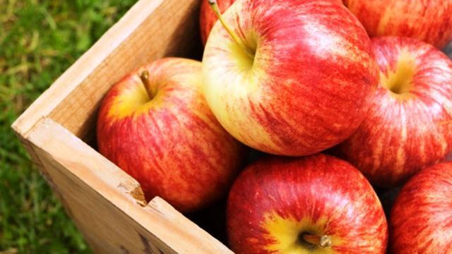 Manfaat Buah Apel Hijau Dan Merah Baik Untuk Kesehatan Tubuh Health Liputan6 Com