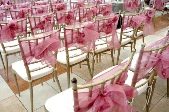 Sillas Tiffany de Eventos Del Toro  Fotos