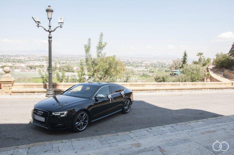Hochzeitsauto Audi  Hochzeit