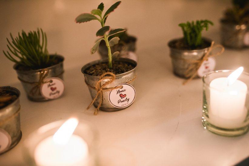 7 ideas para souvenirs fciles econmicos y tiles