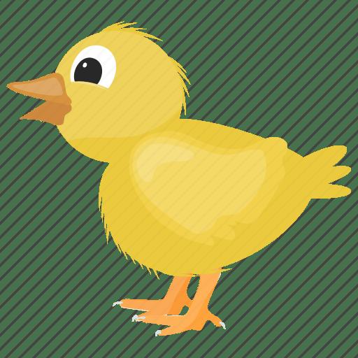 cartoon birds by vectors