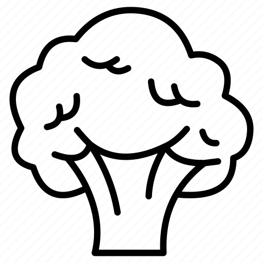 Broccoli, broccoli outline, broccoli soup, vegetable icon