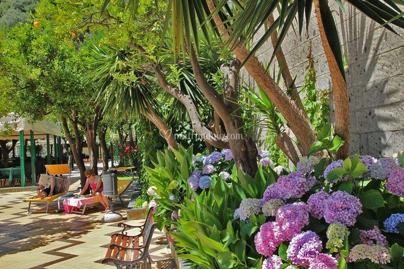 Patio piscina di Grand Hotel Parco del Sole  Foto 7