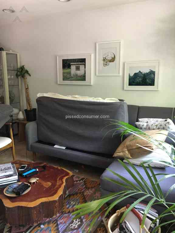Wonderful West Elm Sofa Warranty Hpricot Com