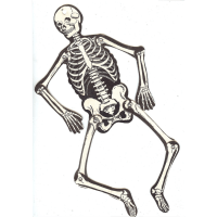Vintage Joined Skeleton Halloween Decoration Beistle ...
