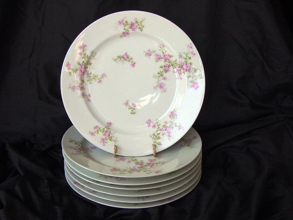 50 OFF Seven 7 Limoges Porcelain Dinner Plates