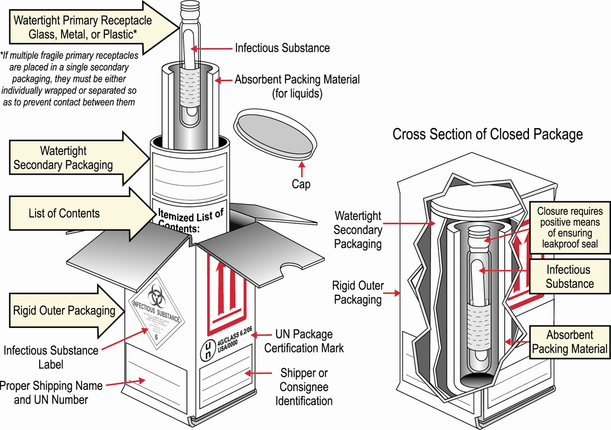 hight resolution of packaging diagram 1200