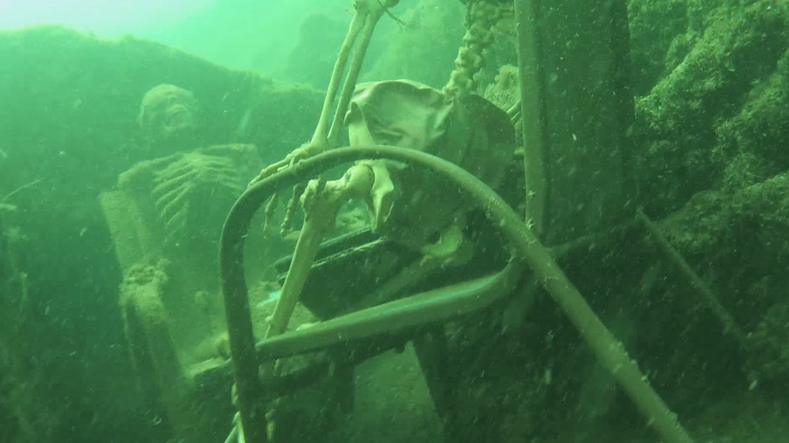 lawn chairs bean bag chair covers target underwater skeleton tea party discovered by arizona snorkeler - the verge