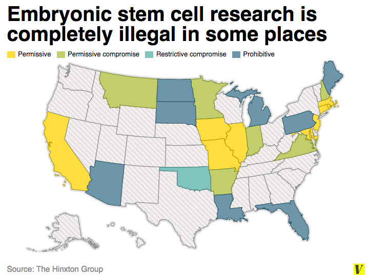 Stem cells were one of the biggest controversies of 2001 ...