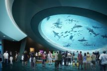Miami Frost Museum Of Science Open In - Curbed