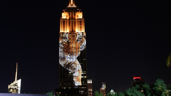 Night Empire State Building Face Of Extinction Verge