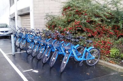 Bluegogo bikes in San Francisco