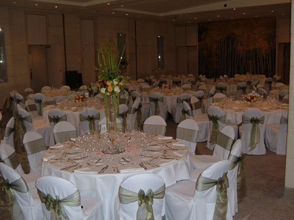 chair covers sage green single for sale organza sash from quality photo 12
