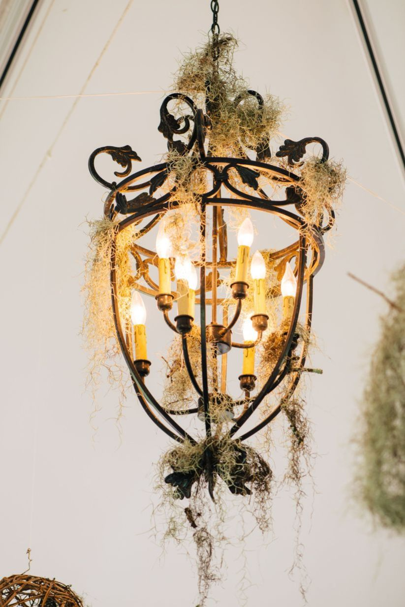 Southern wedding decor with brass chandelier covered in Spanish moss