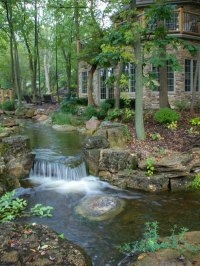 Find Out How This Million-Dollar Backyard Oasis Was ...