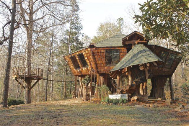 Treehouse-3-92ae97-1024x683