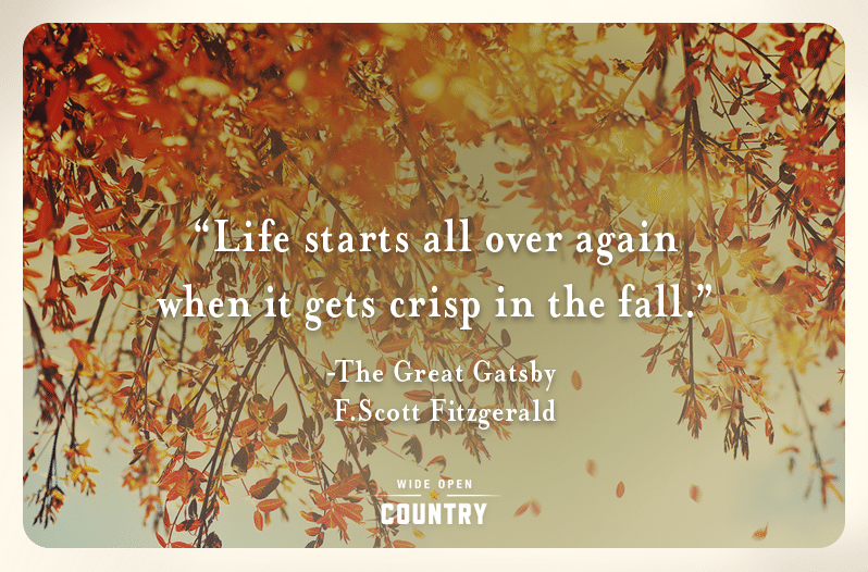 Cozy Fall Wallpaper 6 Fall Quotes That Will Get You Ready For The Season