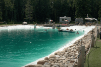 This Guy Built His Family an Epic Backyard Swimming Pond