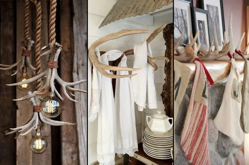 Antlers Decor 10 Ways to Use Shed Antlers in Home Decorating