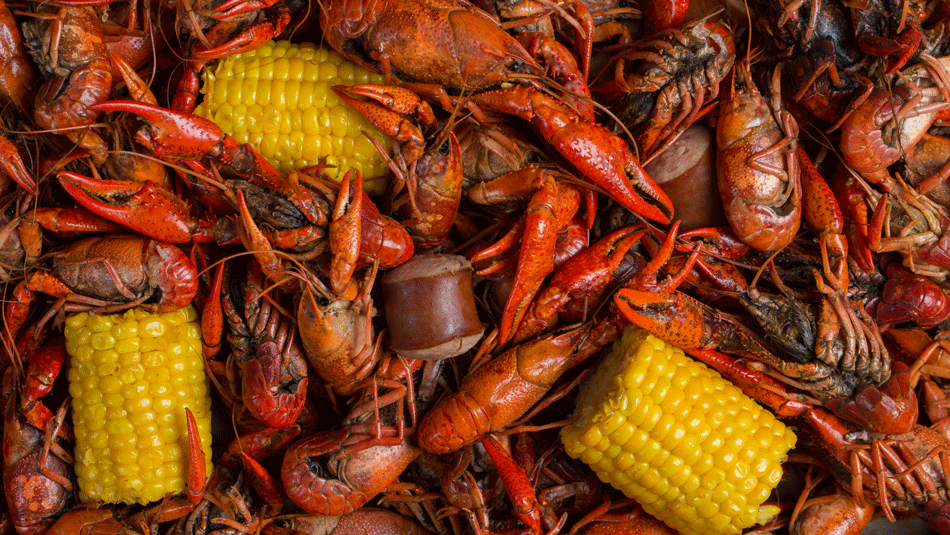 Creole vs Cajun Whats the Difference in Louisiana Cooking Styles