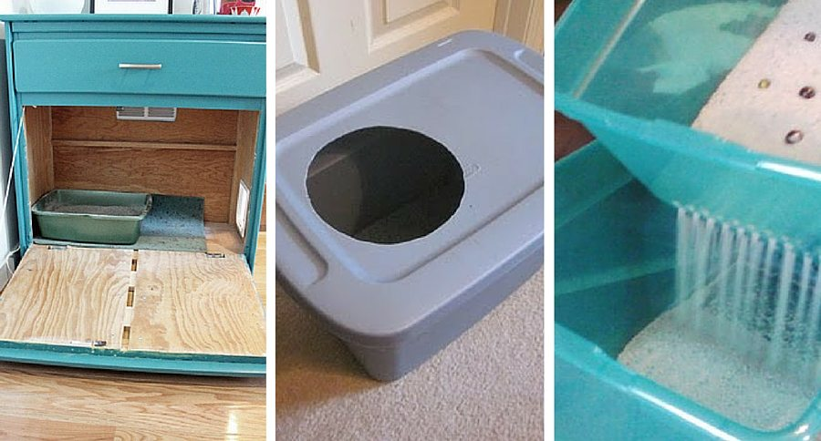 Smart DIY Options for a Cleaner Litter Box