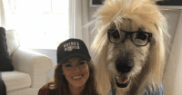 19 Best Dog and Owner Costumes That Will Help You Win ...