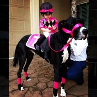 19 Best Dog and Owner Costumes That Will Help You Win