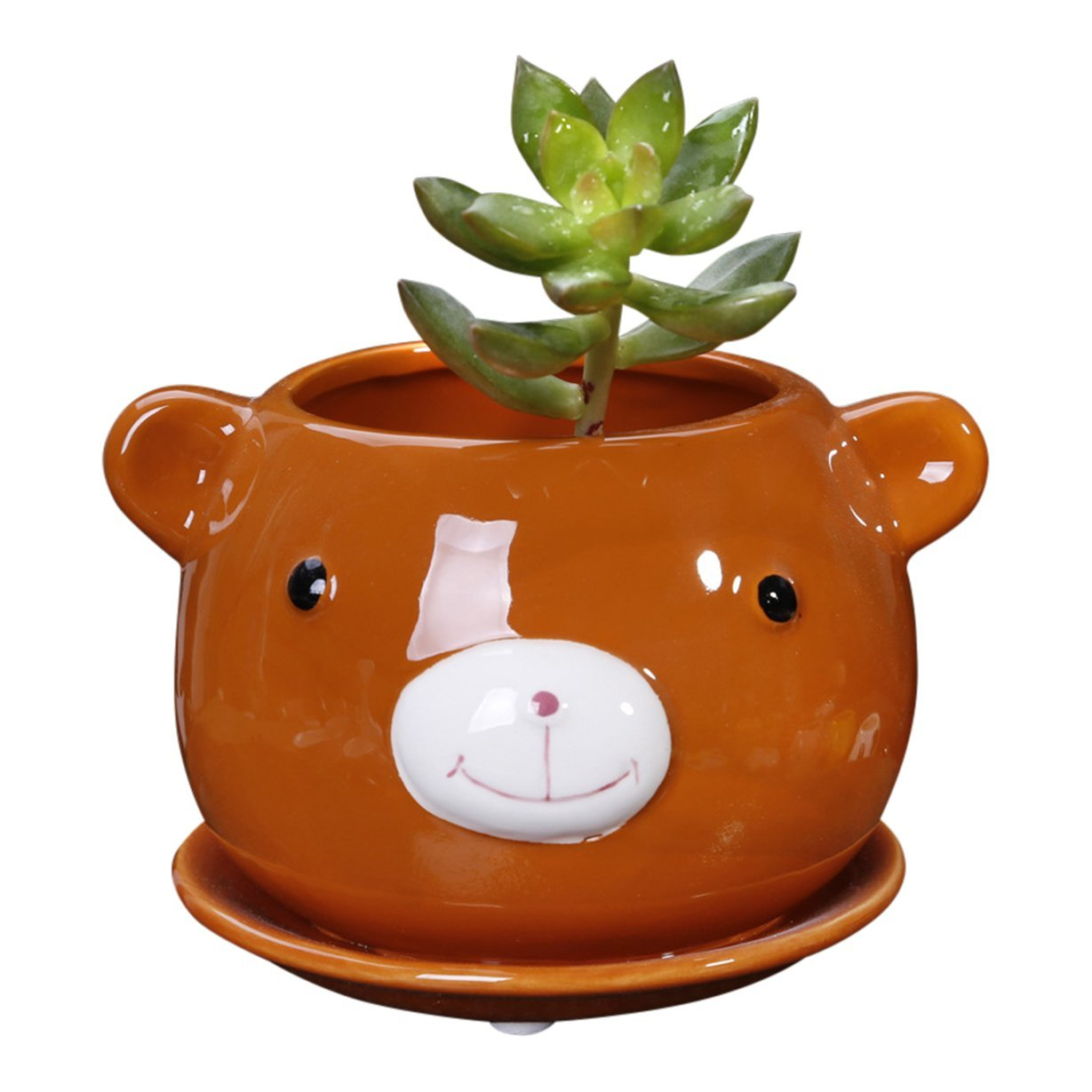 7 Different AnimalShaped Succulent Planters Just in Time